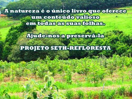 Novas imagens do projeto SETH-REFLORESTA